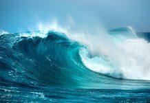 Mơ thấy sóng biển đánh con gì?